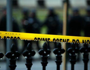 Strzelanina na Festiwalu Czosnku. Nie żyją trzy osoby