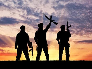 """Szef Interpolu mówi o drugiej fali terroryzmu. """"Można to nazwać ISIS 2.0"""""""
