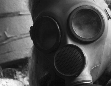 Catherine Ashton: Syria? Słyszymy przerażające dane
