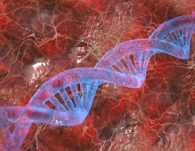 Ludzie ewoluują. A wraz z nimi – choroby autoimmunologiczne