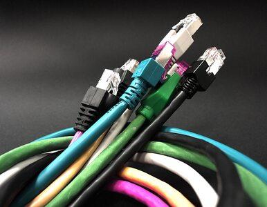 Szybki internet wreszcie będzie powszechny? Miliard euro dla Polski