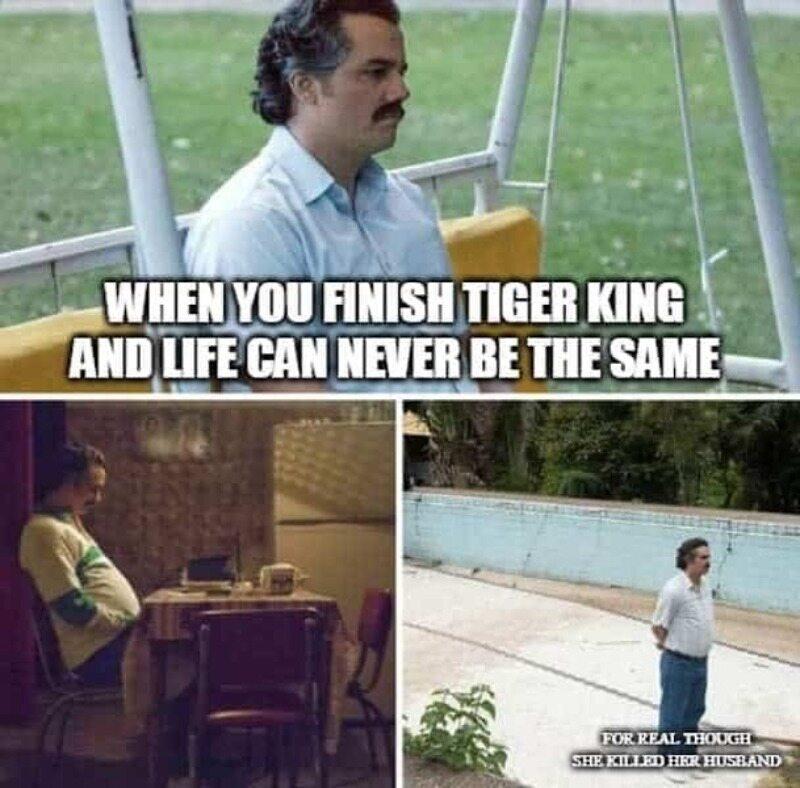 """Kiedy skończyłeś oglądać """"Króla tygrysów"""" i życie nigdy nie będzie takie samo"""
