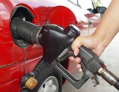 Za paliwa będziemy płacić więcej