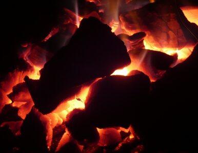 Niemcy będą wydobywać węgiel w Mongolii