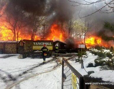 Spłonął dom posła PO i unikatowe zbiory muzealne