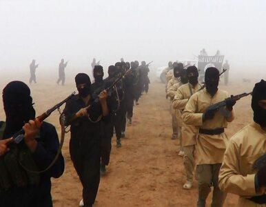 """Islamiści usprawiedliwiają kanibalizm. W """"podręczniku"""" opisali sposoby..."""