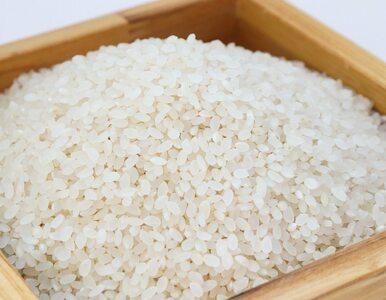 Czy spożywanie zimnego ryżu jest bezpieczne?