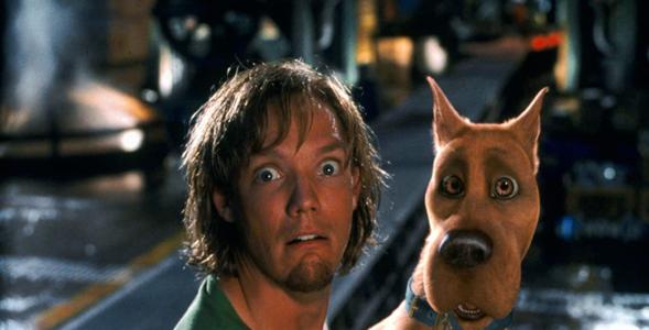 Psy z kultowych filmów i bajek. Pamiętasz jak się nazywały? QUIZ