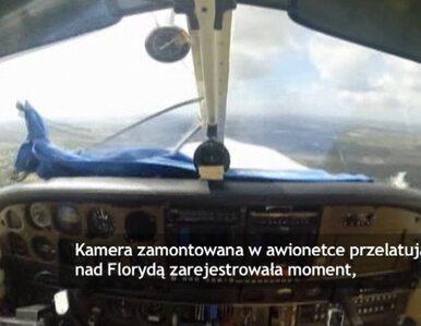 Samolot zderzył się z ptakiem. Wypadek zarejestrowała kamera