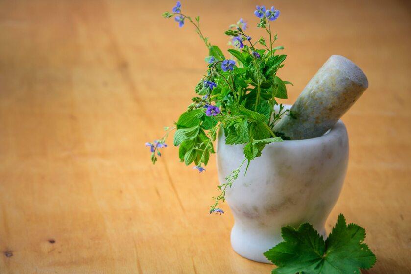 Lecznicze zioła